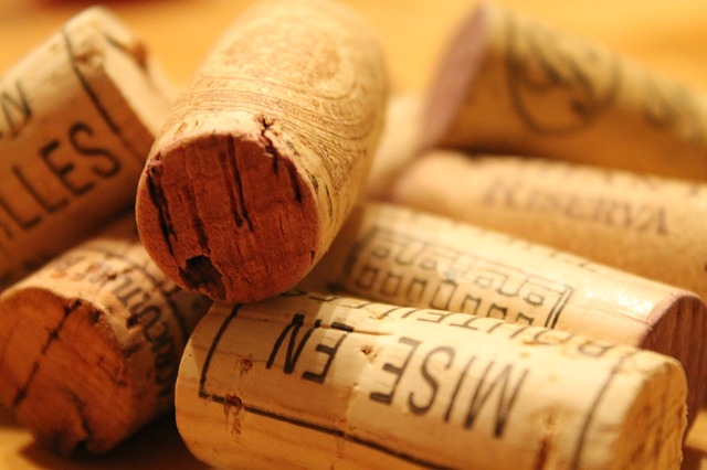 50e4d24b4950b108f5d08460962d317f153fc3e45657794a7c2b78d49e 640 - Easy To Understand Wine Tips For The Average Consumer