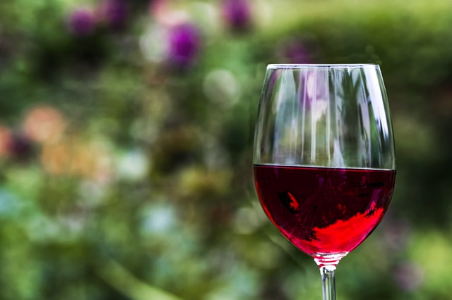 54e4d54a4952ad14f6da8c7dda793278143fdef8525476417c2d7fd5954b 640 - What You Need To Know About Wine