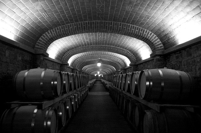 wine  all that you need to know - Wine 101: All That You Need To Know
